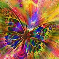 papillon-chacra-aura.jpg