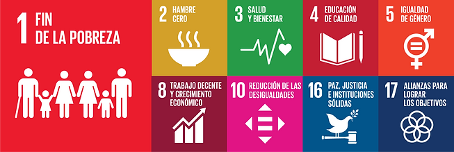 SDGs-04.png