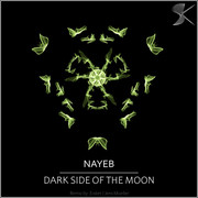 SK303 Nayeb - Dark Side Of The Moon