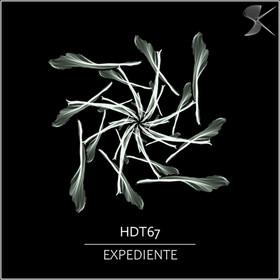 SK306 HDT67 - Expediente