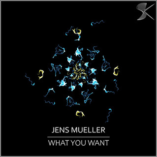 SK300 Jens Mueller - What You Want