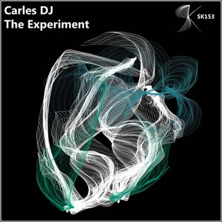 SK153 Carles DJ - The Experiment