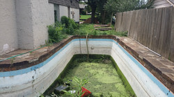 Pool Removal - Before