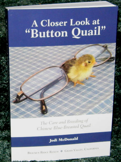 Book: A Closer Look At Button Quail
