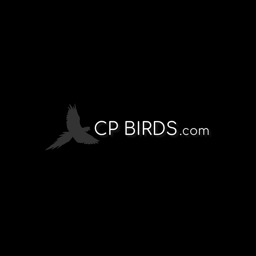 CP Birds Logo military Macaw Flying