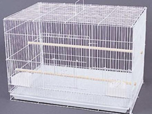 "Cage 24"" Flight"