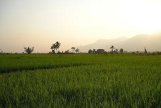 laos-448_1920.jpg