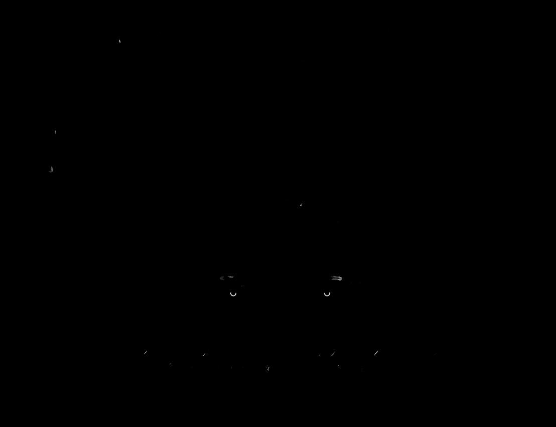 Backgroundless SRC Logo