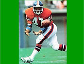 Past Inductee Page - Gerald Willhite - g