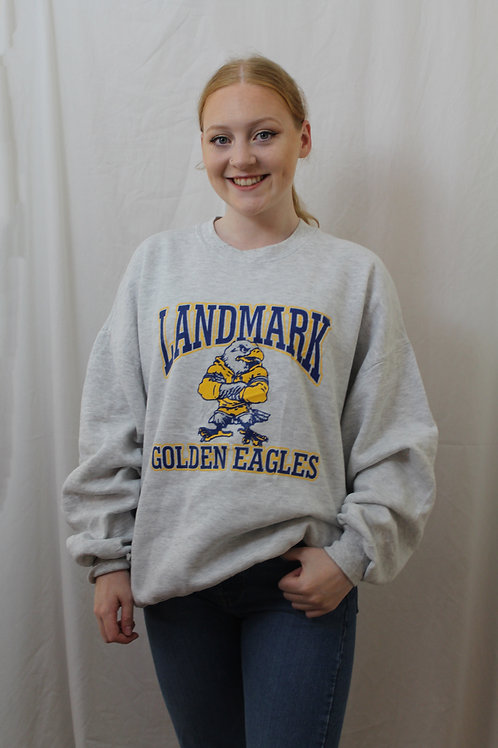 Vintage 'Landmark Golden Eagles' Sweater