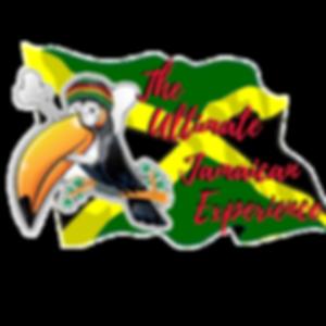 TUJE XP  Logo