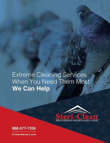 Steri-Clean Branding