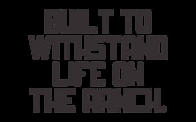 RanchHandHeadline.png