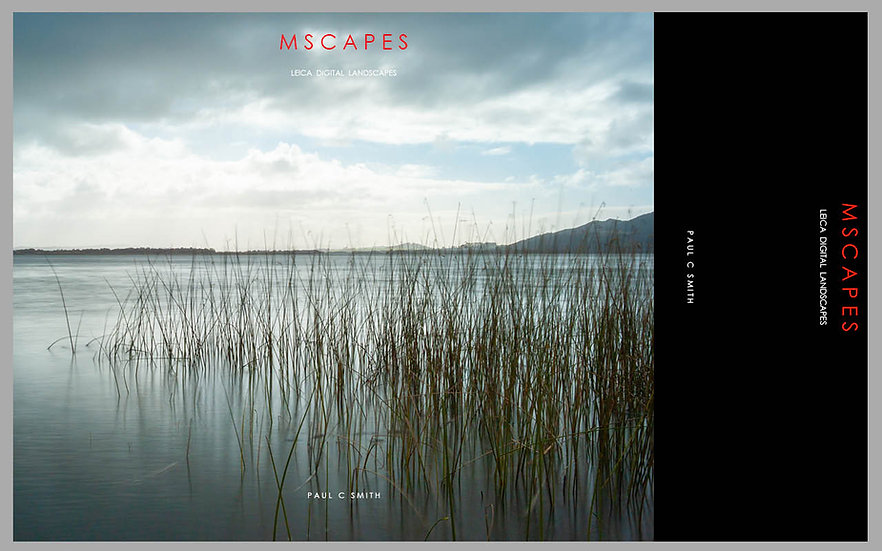 """""""MSCAPES"""" E-Book"""