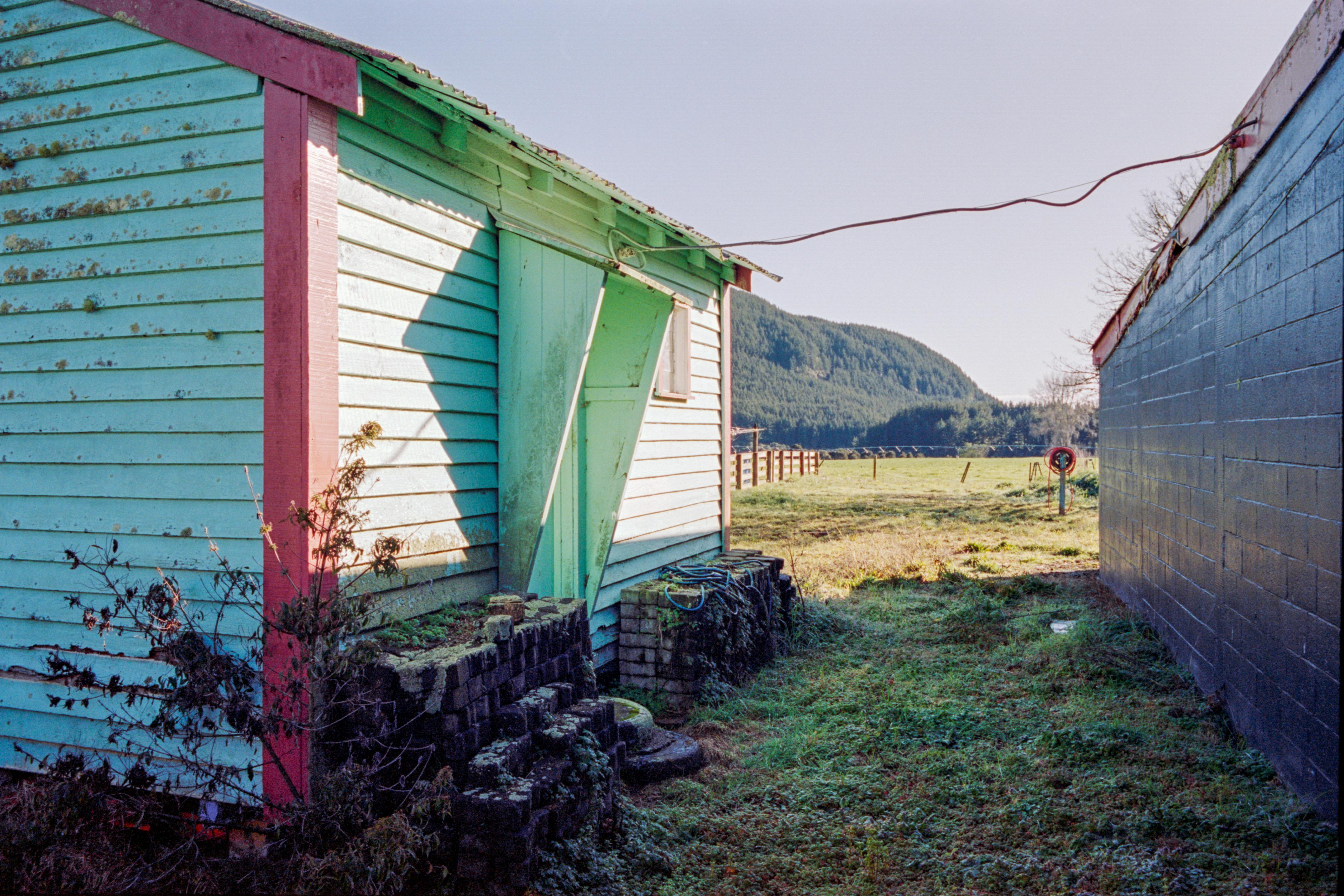 LookingNZ_Portra_M6_Rotorua_32
