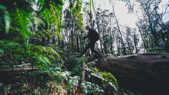 Raw-Travel-Hikes-29-2.jpg