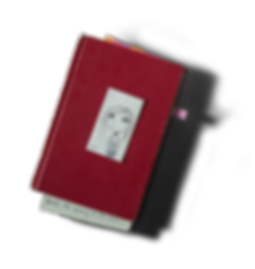 red-notebook.png