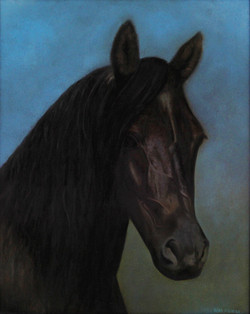 5 - Horse - no frame