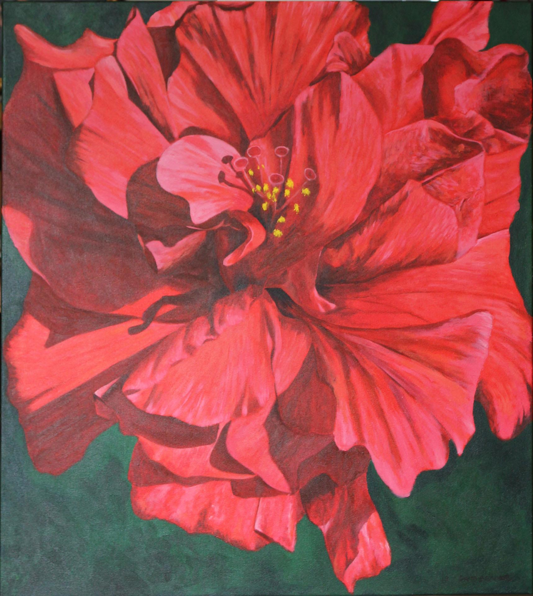 "Hibiscus - 38 x 34"""