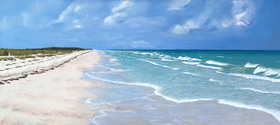 "Dunedin Beach - 20 ""x 44"""