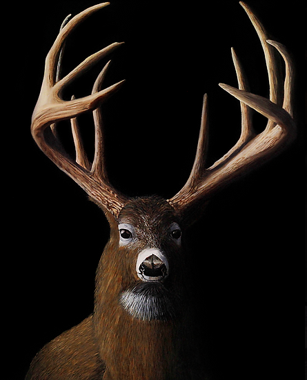 """Deer - 24"""" x 30"""""""