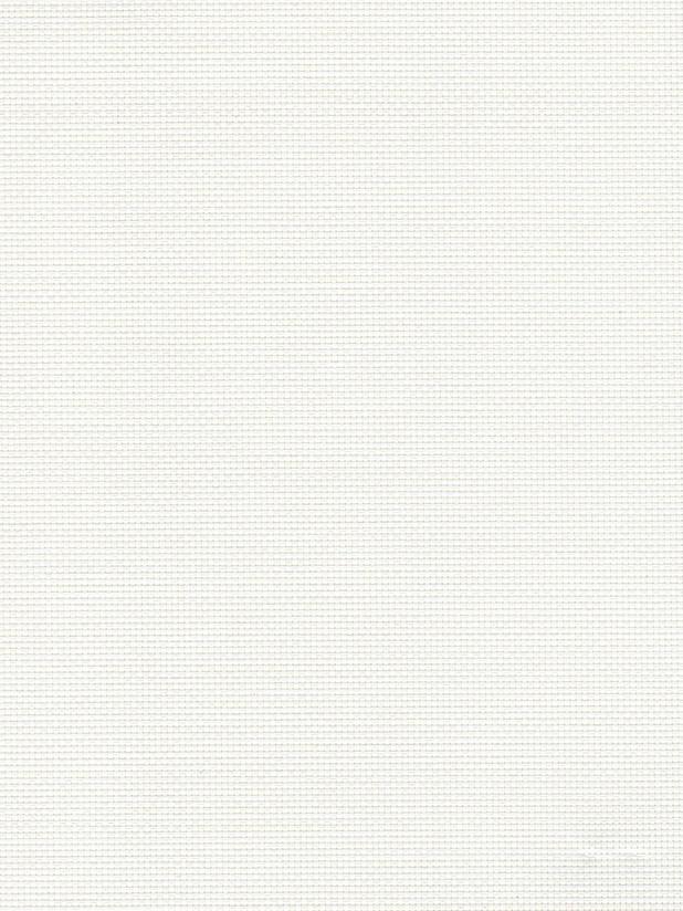 White 2000 phifer
