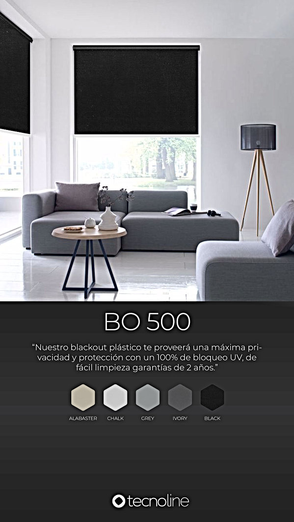 BO 500.jpg