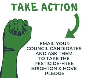 take action.png