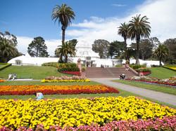 Floral_gardens