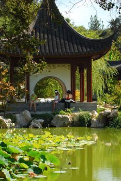 Japanese_Garden_at_Huntington_Library_02