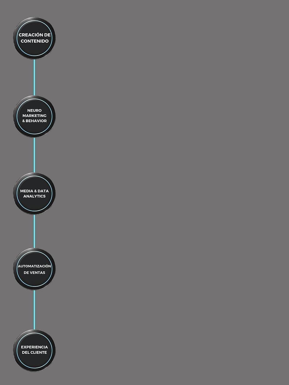 Copia de versiones startup plan.png
