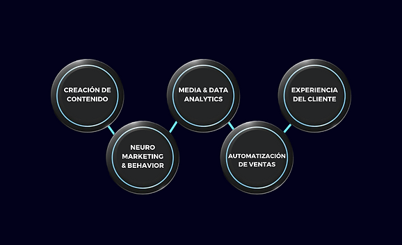 Modelo programa ejecutivo.png
