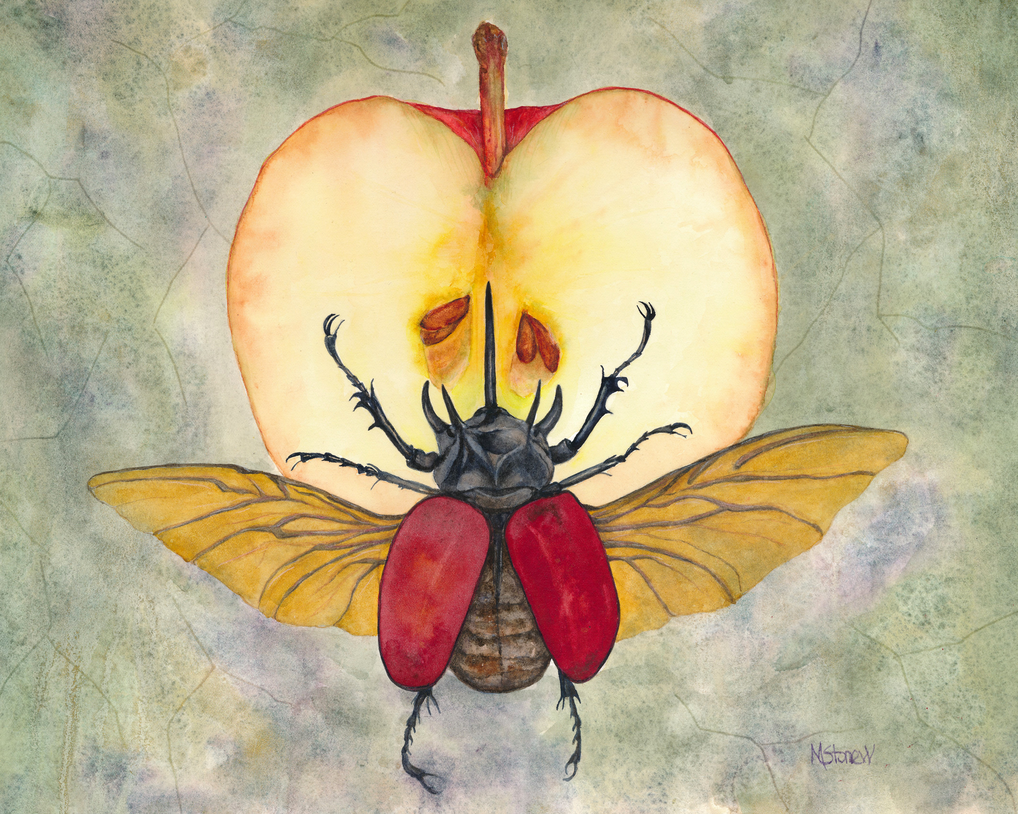 Scarab on Apple