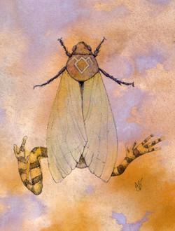 The Frog Moth of Twin Peaks