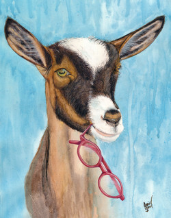 Goat Spectacle