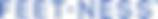 Feet-Ness-Logo-TM_Final.png