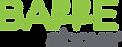 BarreAbove Logo stacked-Registered Trade