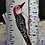 Red Bellied Woodpecker Female