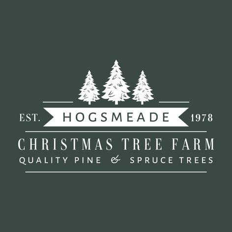 Hogsmeade Christmas Tee