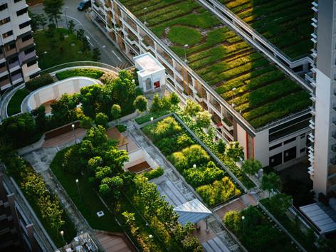 Diseño bioclimático y la eficiencia energética | Revista CONEXIONES 365 de Expo CIHAC