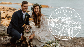 Reese's Rescue 2020 Donations + 20 Posing Ideas with Your Dog