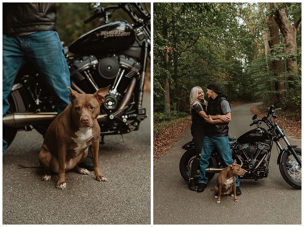 Back Roads Engagement Session with Harley Motorcycle and Pit Bull