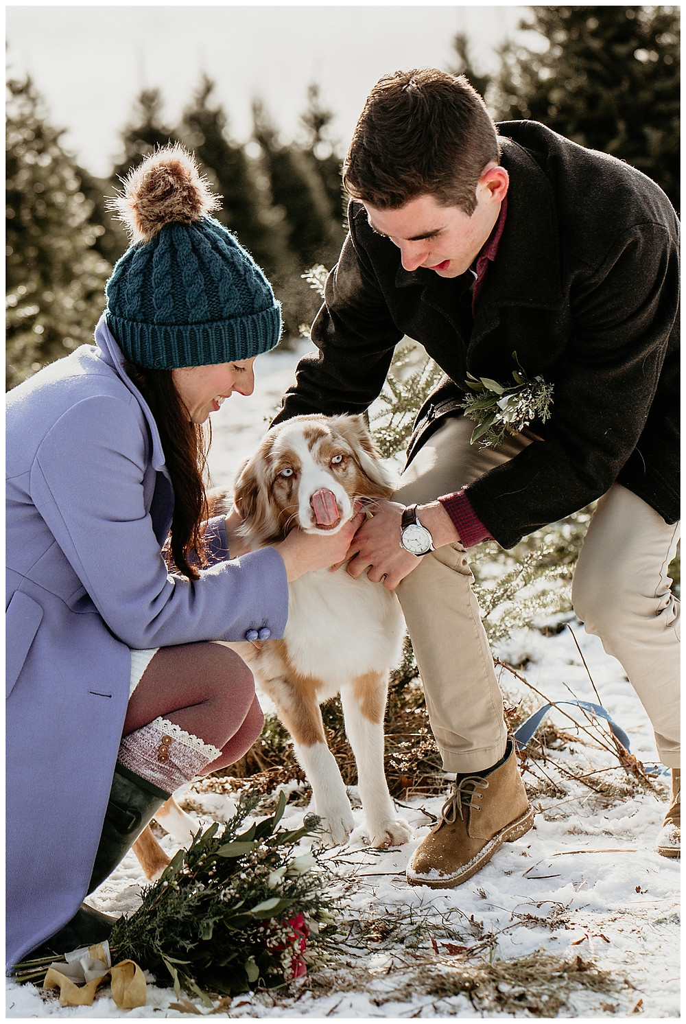 Couples Pre-Wedding Portraits at Vermont Tree Farm with Pup