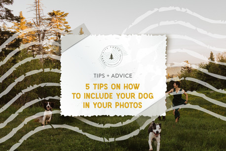5 Tips On How To Include Your Dog in Your Engagement Photos