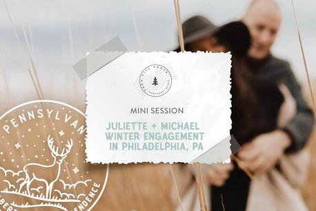 Winter Meadow Mini Engagement in Benjamin Rush State Park, Philadelphia PA