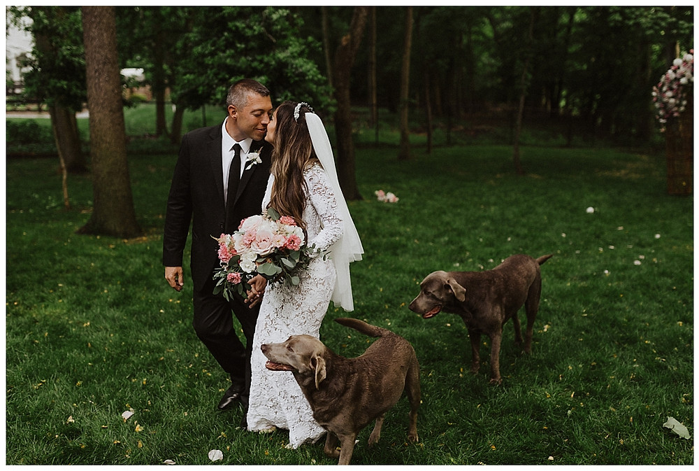 Bride & Groom Portraits with their Dogs, Sara Fitz Co