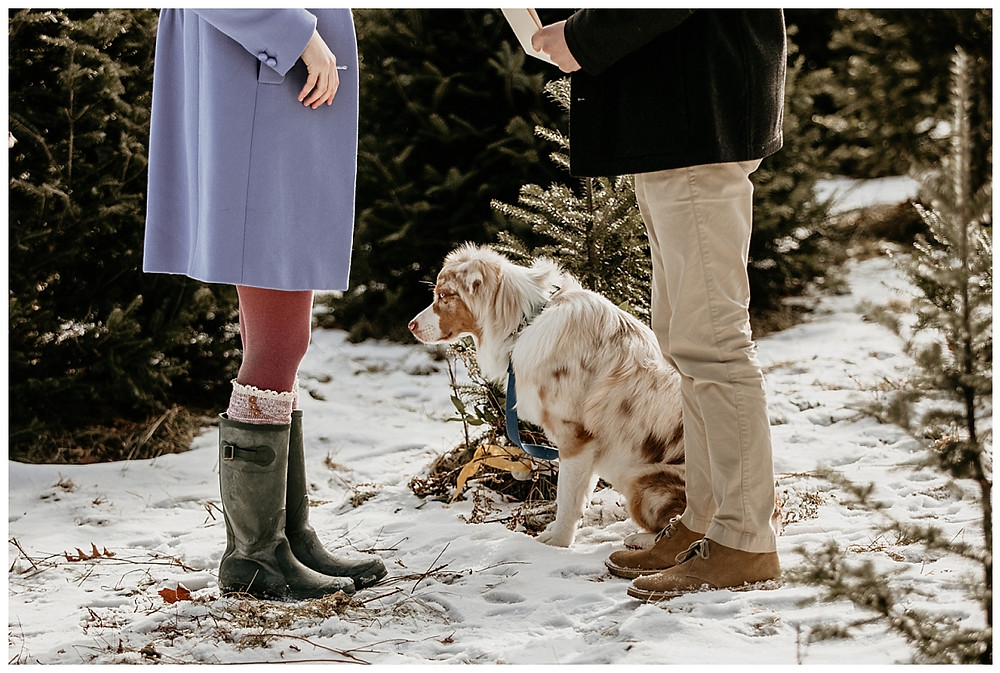 Private Vows at Winter Christmas Vermont Wedding with Aussie Pup