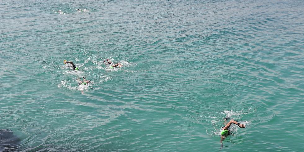 Shoreline Swimrun Race # 2 2021 - Enticer