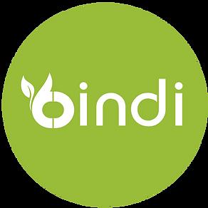 BindiiLogo.png