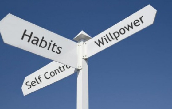 Why Are Habits Hard to Change?